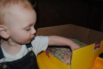 colored oats 009